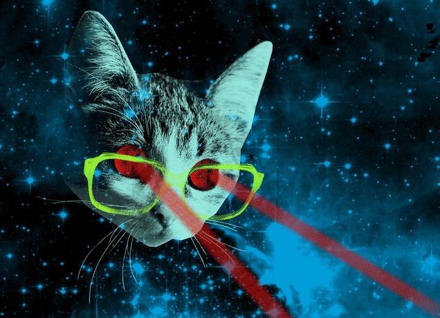 Cat Laser Beam Eyes Shirt At Beach