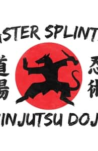The Master Splinter Ninjutsu Dojo, Teenage Mutant Ninja Turtles T-Shirts + Threadless Collection