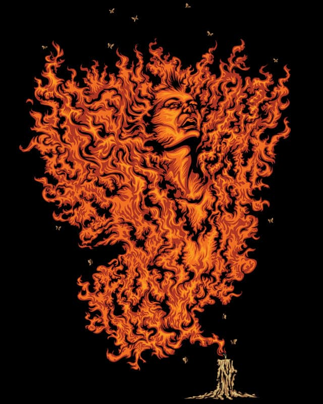 Beauty on Fire by KDLIG on Threadless