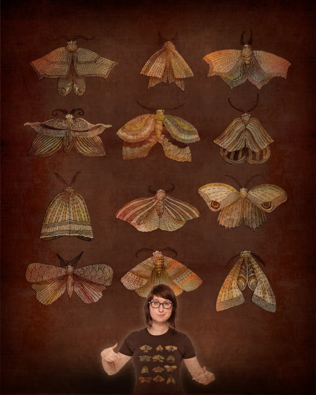 Moth Collector