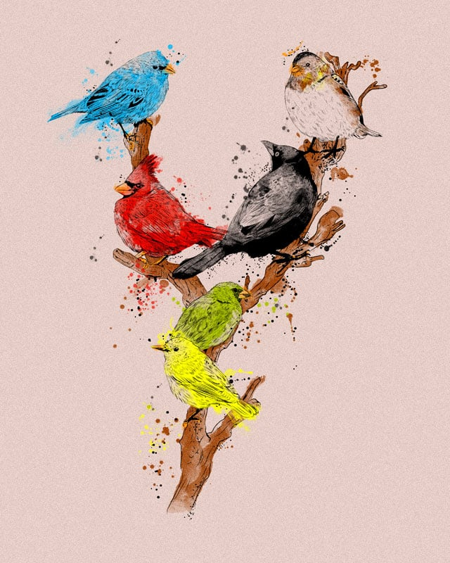 Native Birds by kooky love on Threadless