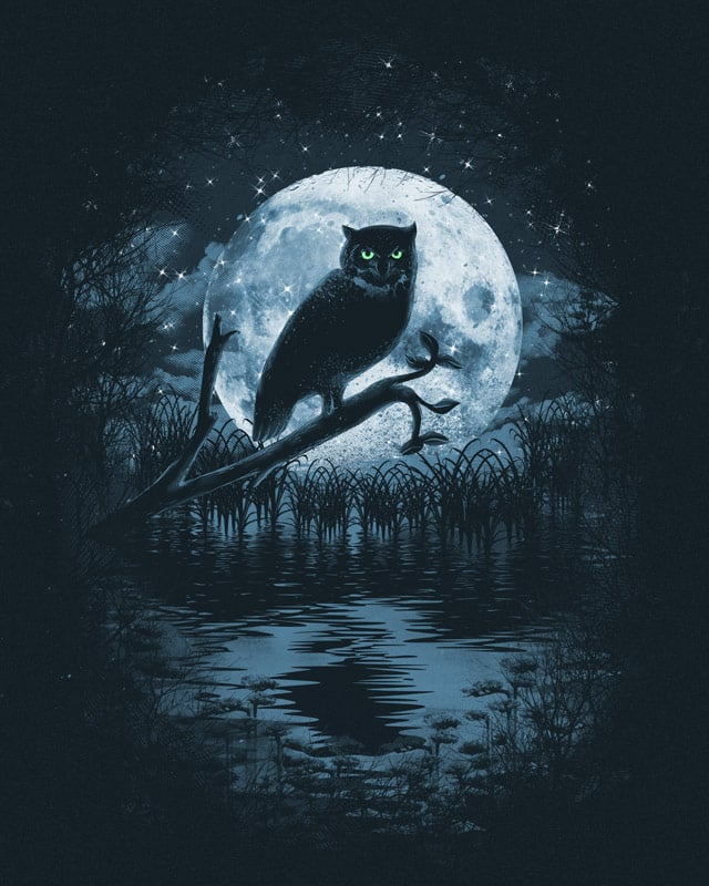"""Owl Moon"" by dandingeroz on Threadless"