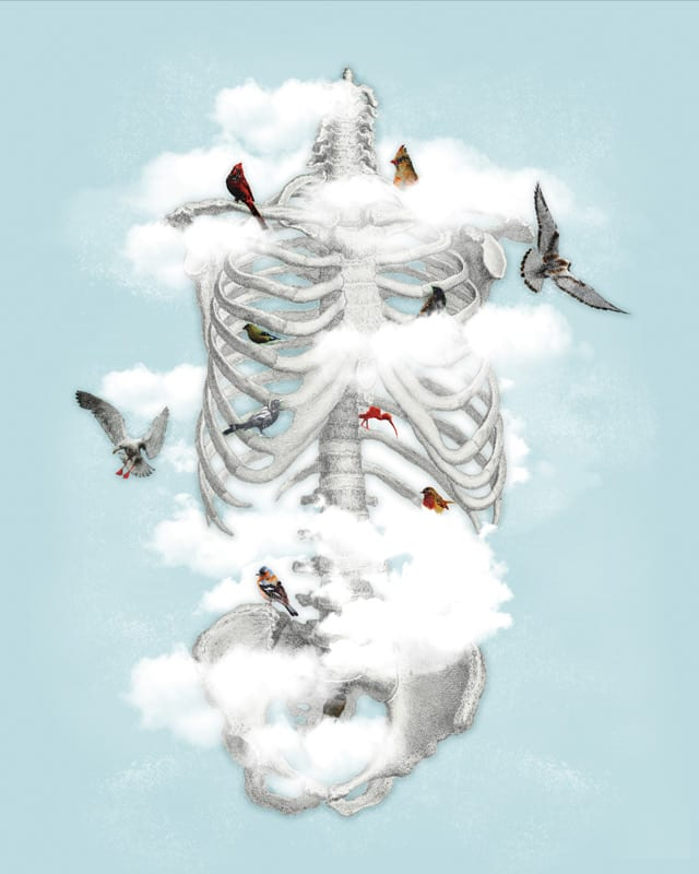 Bird Cage by dhectwenty on Threadless
