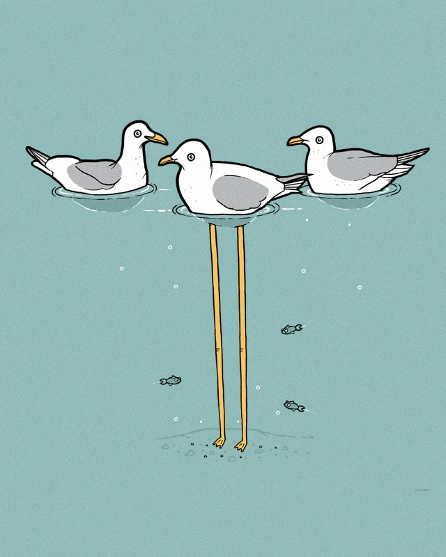 Seagulls by randyotter3000 on Threadless